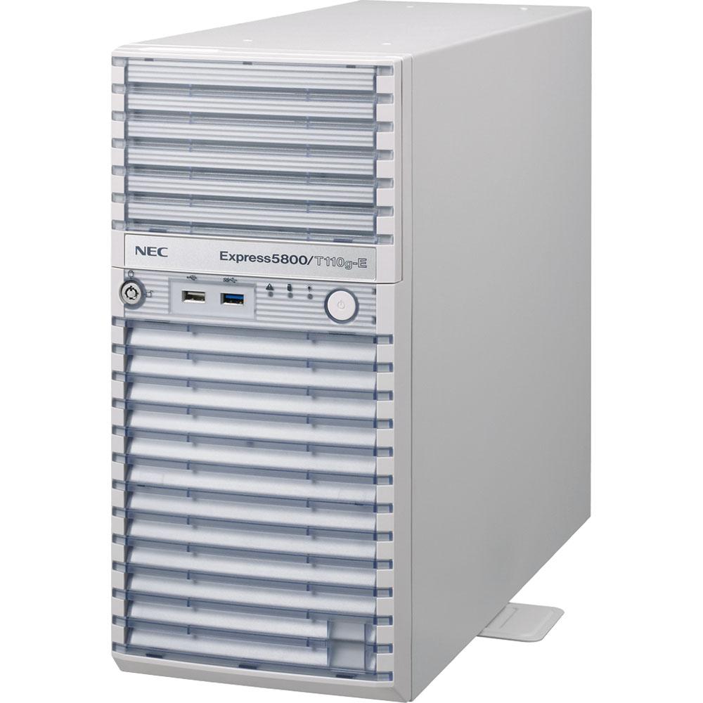 NEC NP8100-2186YPCY [Express5800/T110g-E(4C/E3/4G/2HD-W28R2)]