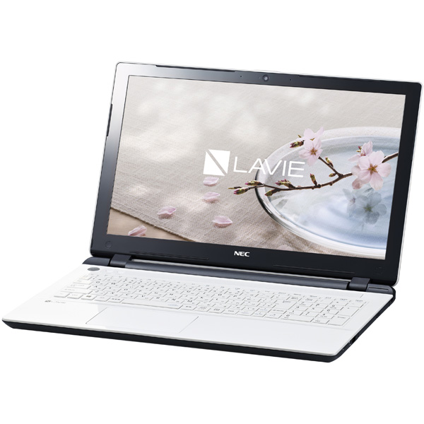 NEC PC-GN16CJSLDC5AD5YDA [LAVIE Direct NS(e)(Cel 4GB 500GB DSM なし W10P 1年)]