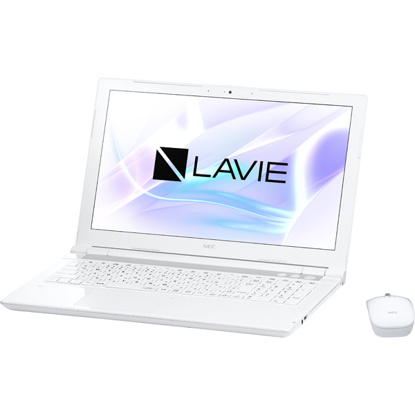 NEC PC-GN165ERGLCGCDWTDA [LAVIE Direct NS(S)]